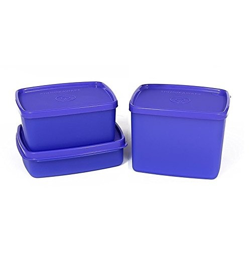 Signoraware Director Special Medium Lunch Box with Bag, Violet